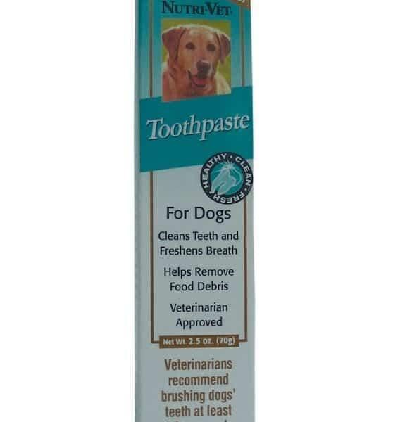 Nutri-Vet® Enzymatic Dog Toothpaste 2.5 oz. 1