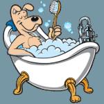 Bath and Dry