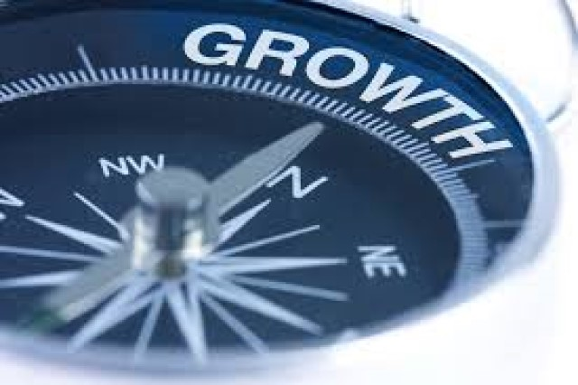 Company Growth Profit