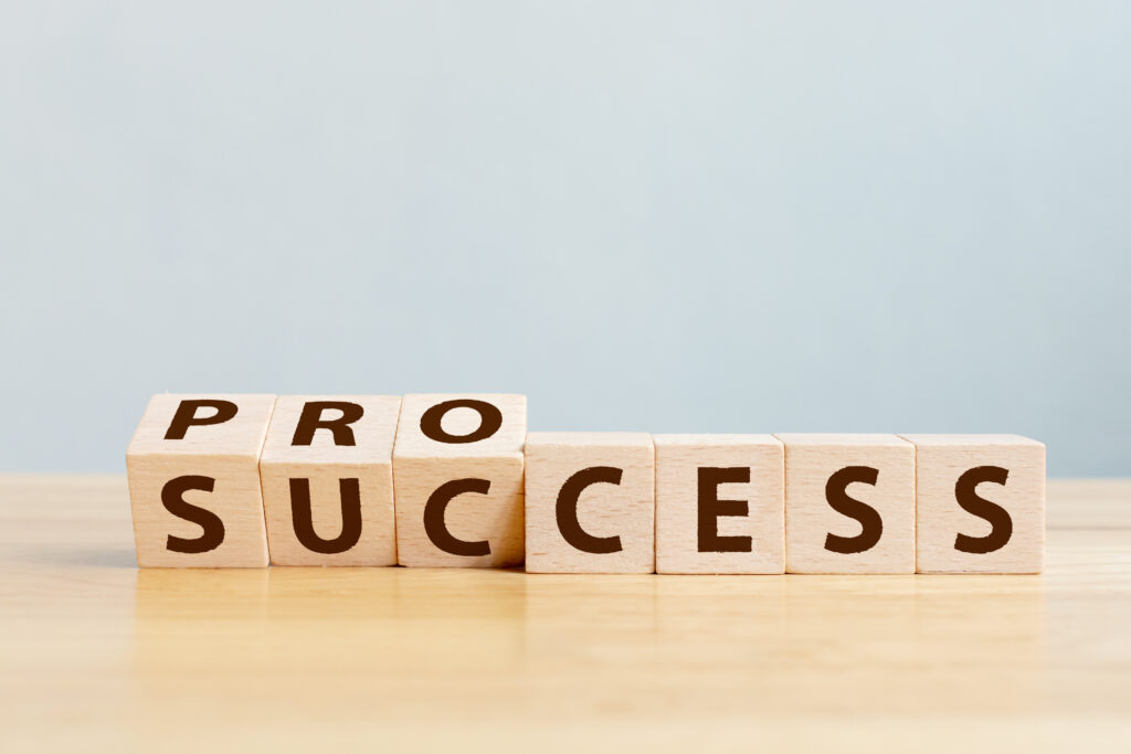 Define process project management