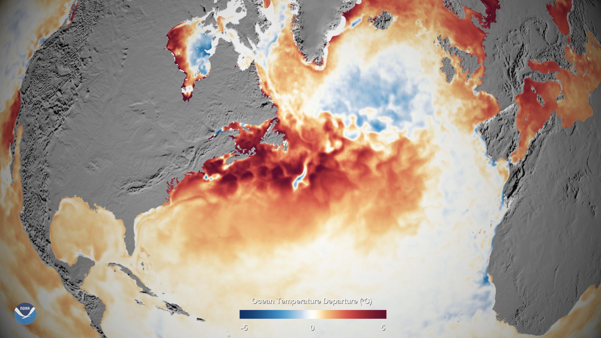 Warm Sea Surface Temperatures in the Western North Atlantic