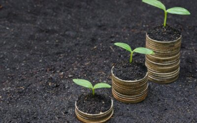 Building Financial Resilience