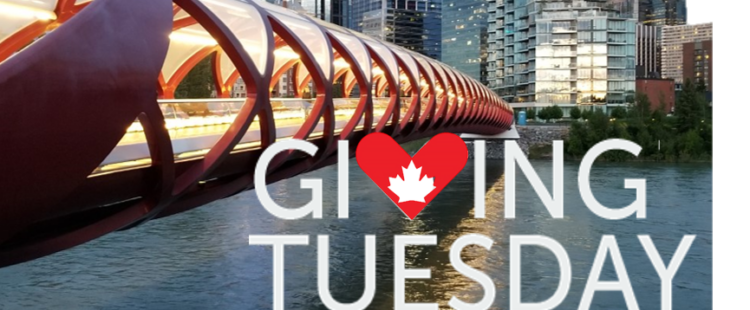 GivingTuesday: Global insights for building community in YYC