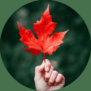 fall-releaf