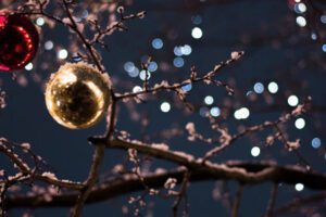Christmas lights in a tree outdoors