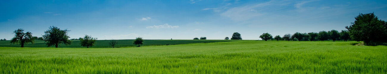 utah land use and zoning attorneys