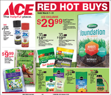 March Red Hot Buys for Ace Hardware in Centreville, MD