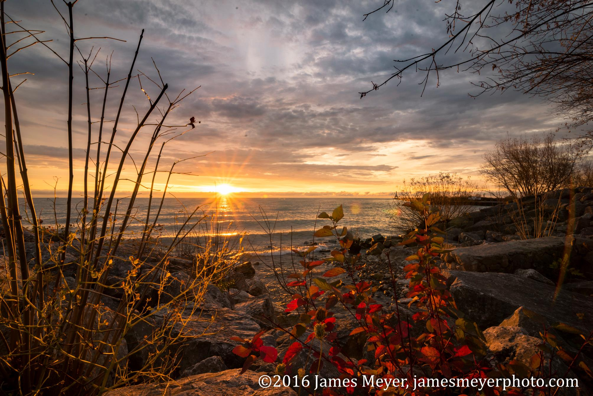In the Beginning by James Meyer Photography