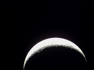 Doyle Moon22-73