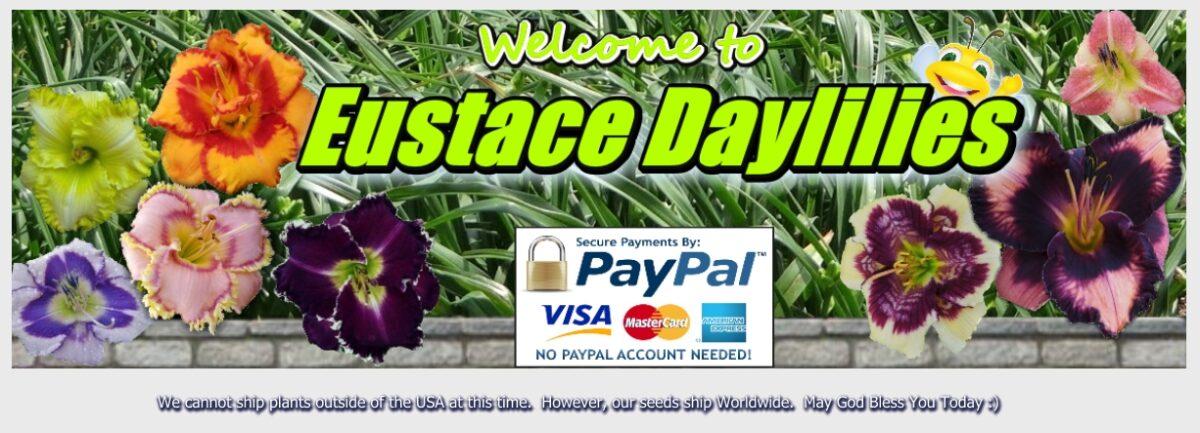 Eustace Daylily Farm