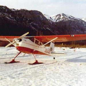 L-3000 Straight Ski