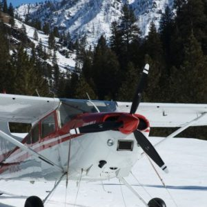 LW-3600 Fixed Penetration Ski