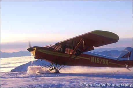 L-2500A Straight Ski