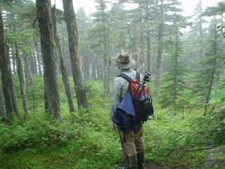 Hike Mount Alice