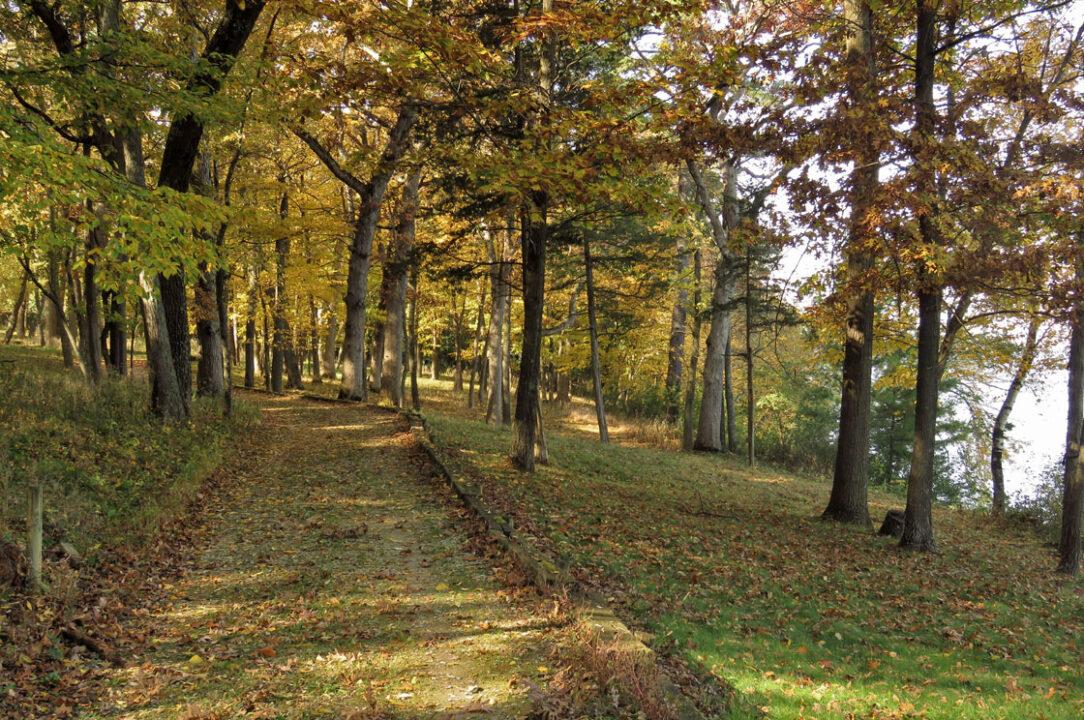 Tichora Conservancy - trail along Green Lake