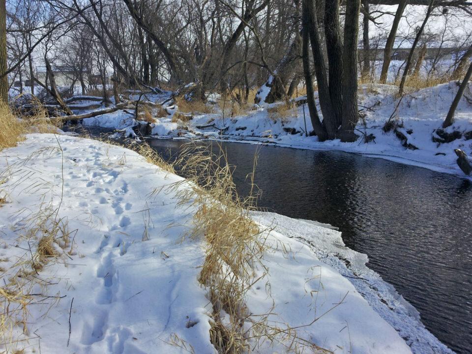 Guskey-Miller 20140109_132847 Silver Creek