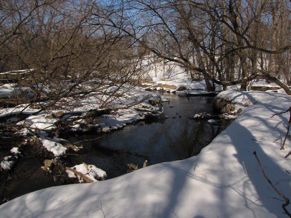 Guskey - Silver Creek confluence1 2-19-10