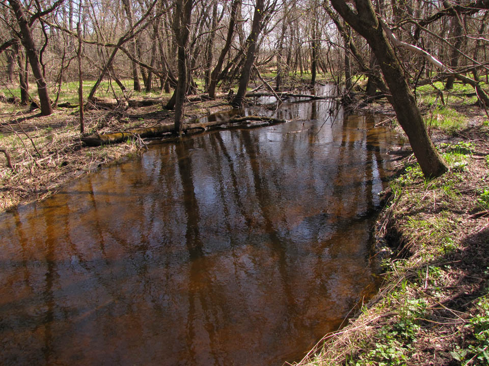Guskey - Silver Creek1 4-11-10
