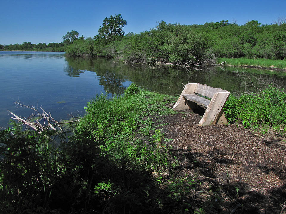 Hammer's Tr - bench on NorwBay 5-28-10