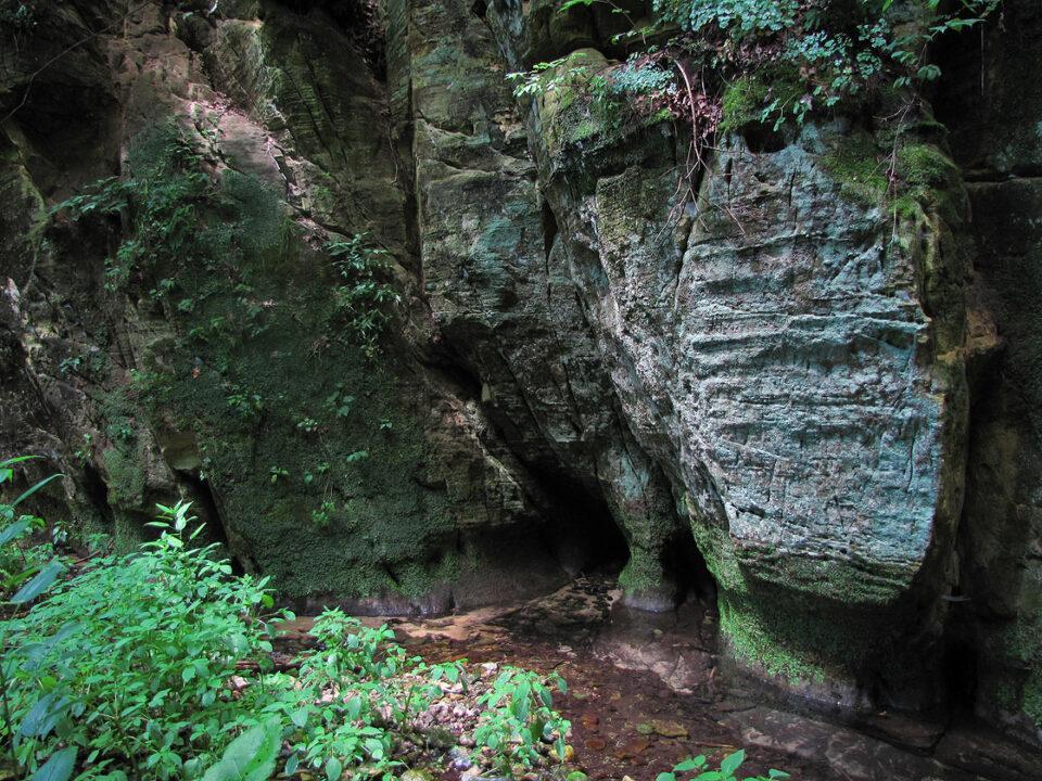 Mitchell Glen 7-8-10 sandstone cliffs and stream