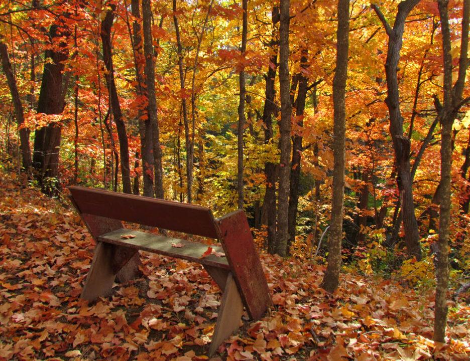 Mitchell Glen in fall10 10-3-12