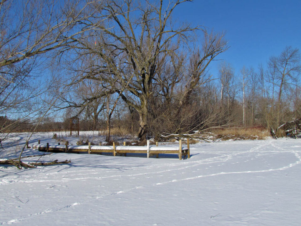 Spaulding's Bridge landing 1-29-14 view from ice1