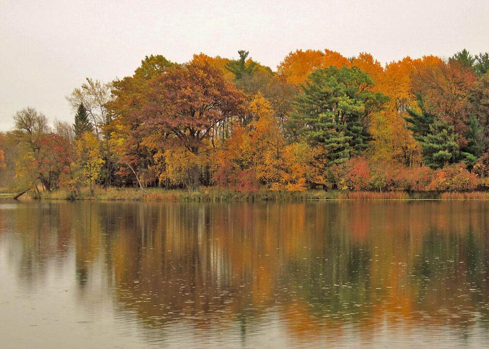Sugar Island Conservancy - autumn colors