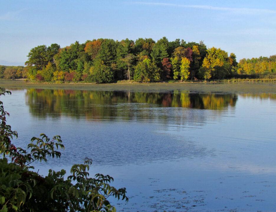 Sugar Island Conservancy-fall color