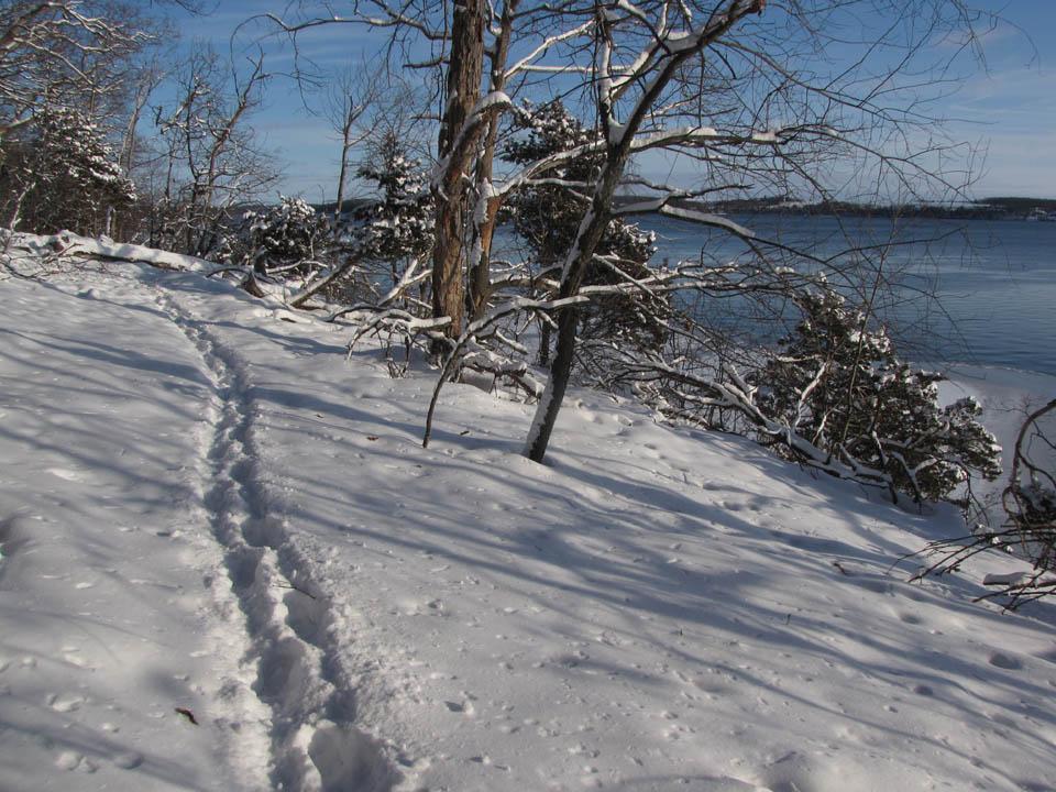 Winnebago Tr winter view1 1-8-10