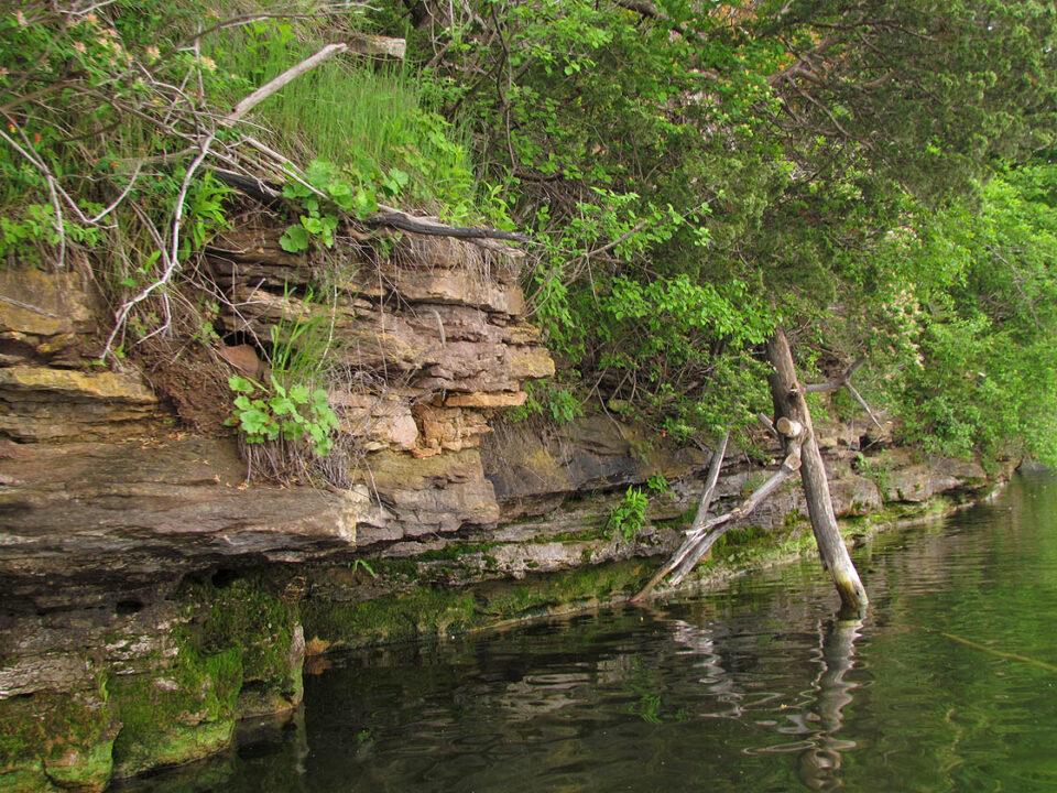 Winnebago Trail Conservancy - shoreline view from Green Lake