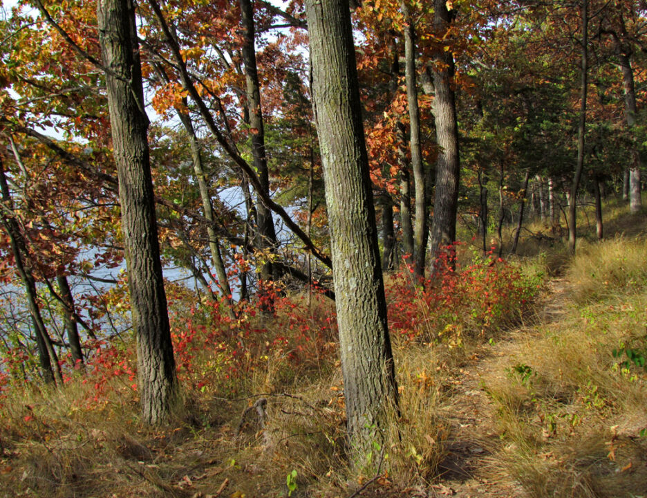 Winnebago Trail - autumn1 10-4-12