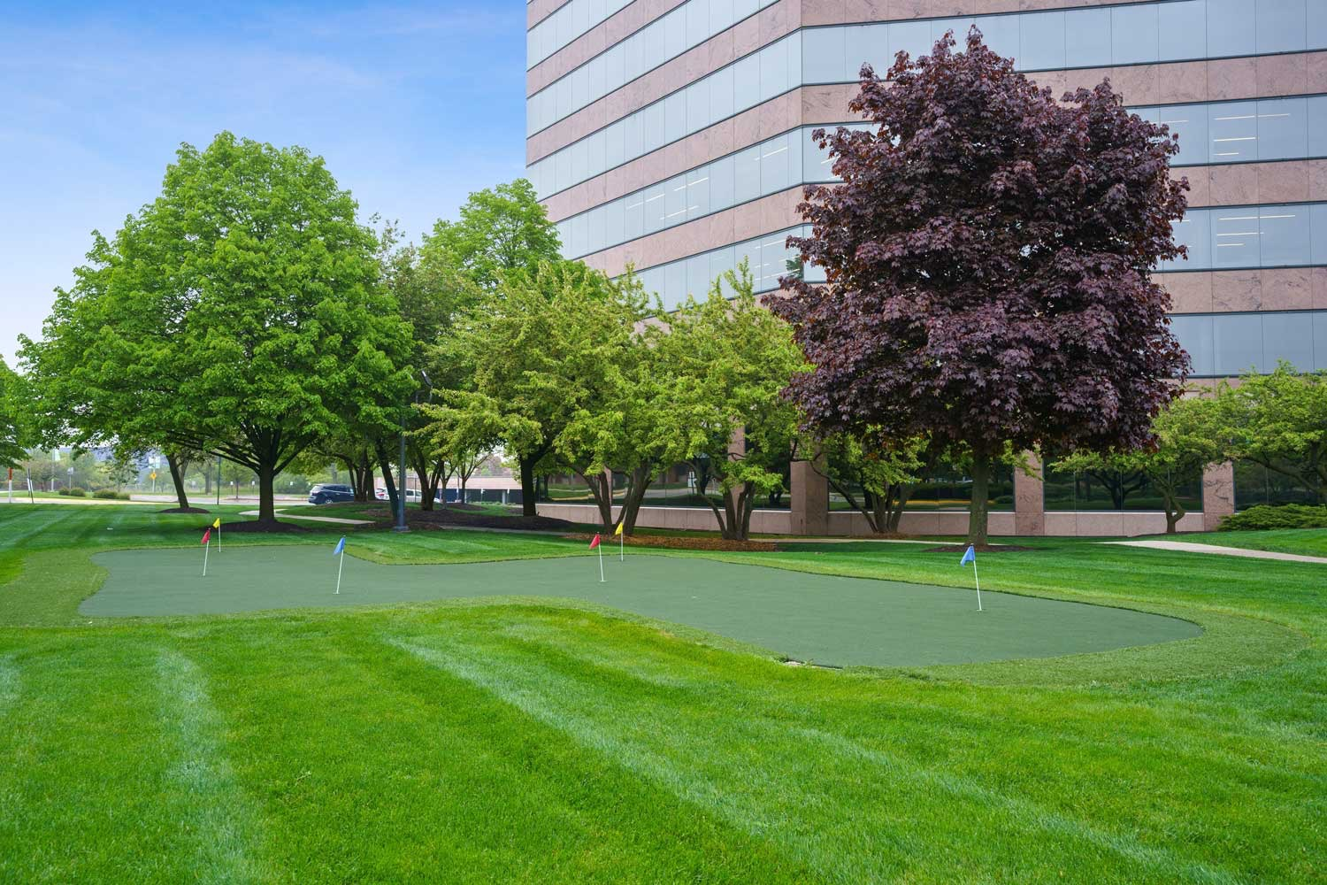 Office Base Putting Green