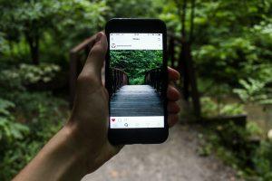 Instagram - Wooden Bridge