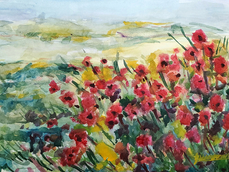 A Field of Poppies - Watercolour Painting on Art Paper by Jessica Brown Art and Fashions.
