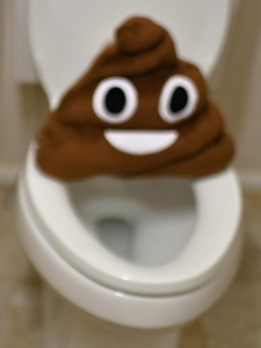 Ron Miller Plumbing Toilet Problems