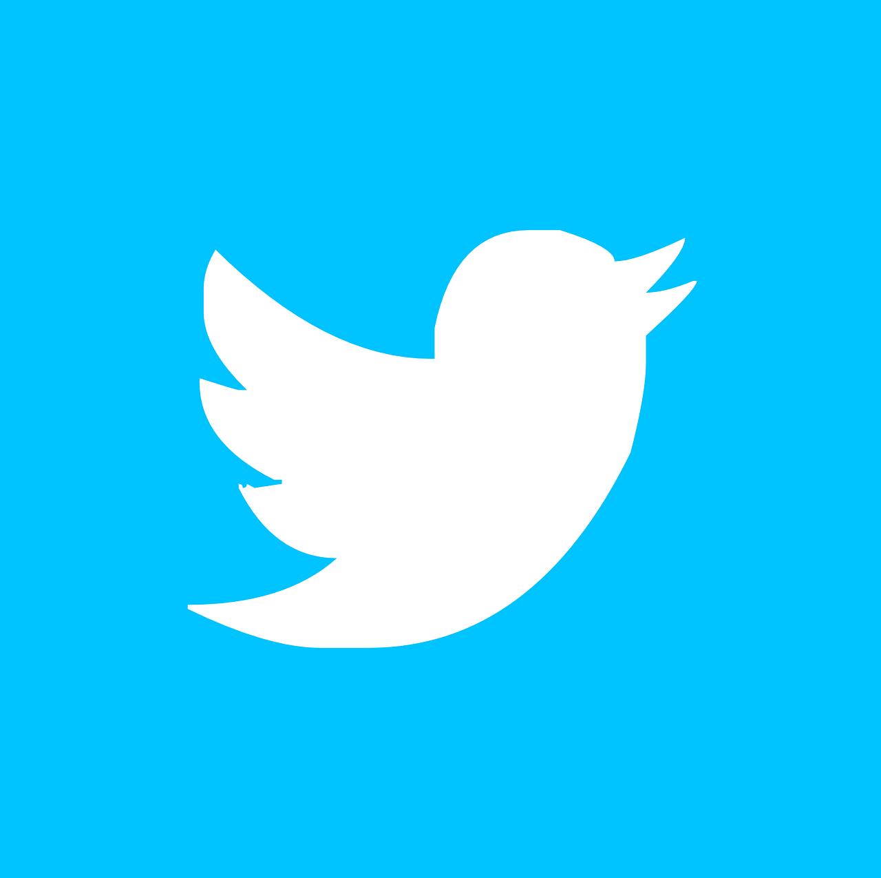 twitter, pin, button