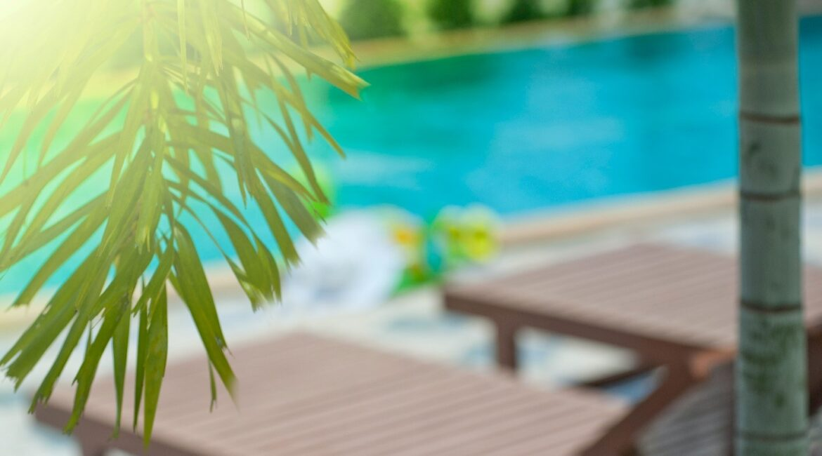 Foliage with a swimming pool in the background