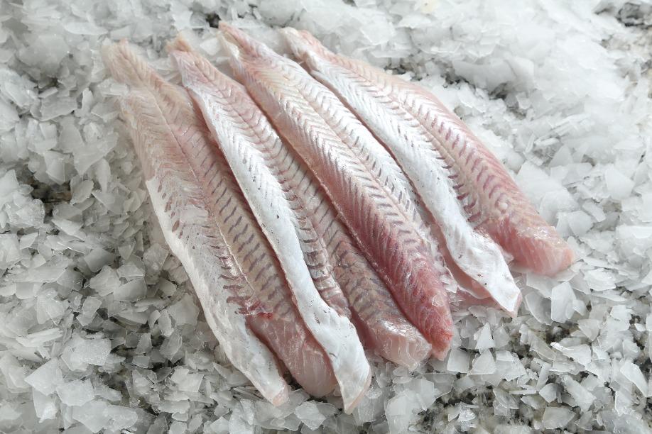 Mirá estas recomendaciones para comprar pescados y mariscos