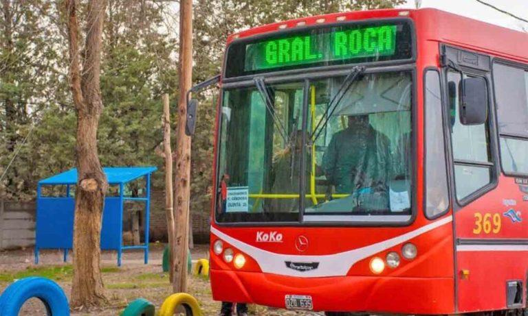 ¿Quiénes podrán utilizar el servicio de transporte urbano e interurbano?