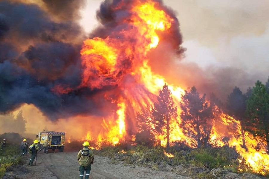 Por incendios forestales la zona Andina se pone en alerta