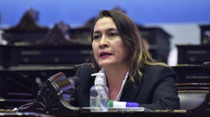 Video: La Diputada Nacional, Lorena Matzen dió positivo de Covid-19.