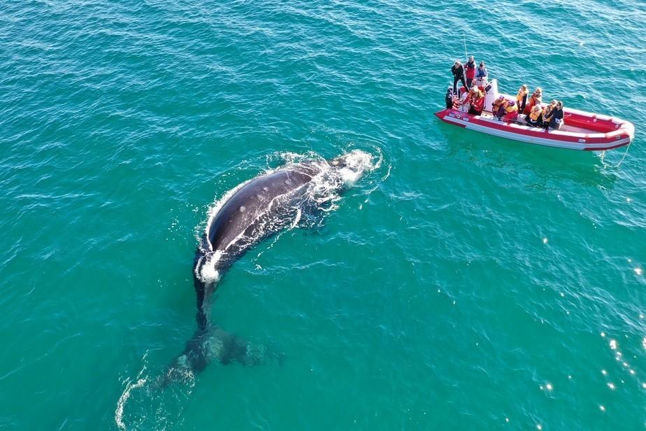 Conoce las propuestas para hacer turismo en la Costa Atlántica