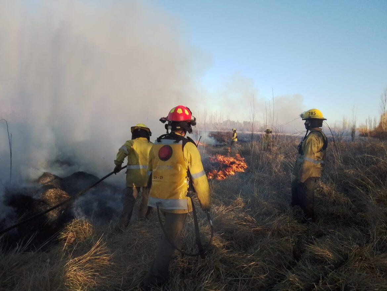 Incendio de pastizales en la zona de Stefenelli demandó varias horas de trabajo