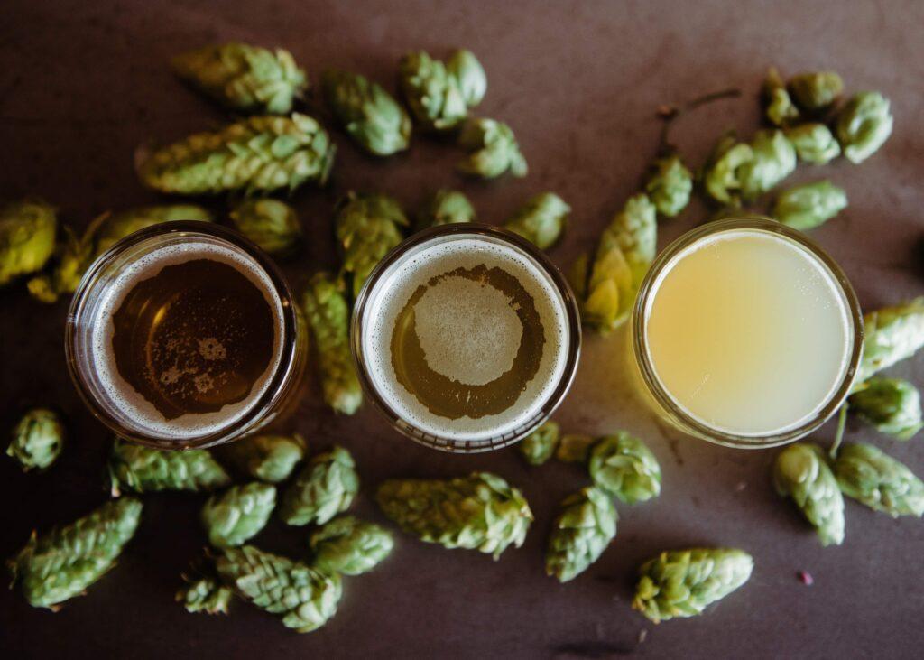 Hops in beer
