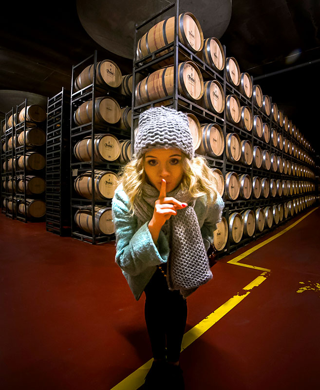 Aging Wine Under Refrigeration