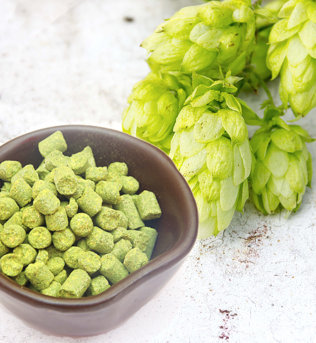 pellet hops and whole leaf hops