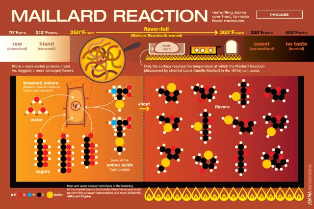 Maillard Reaction Graphic