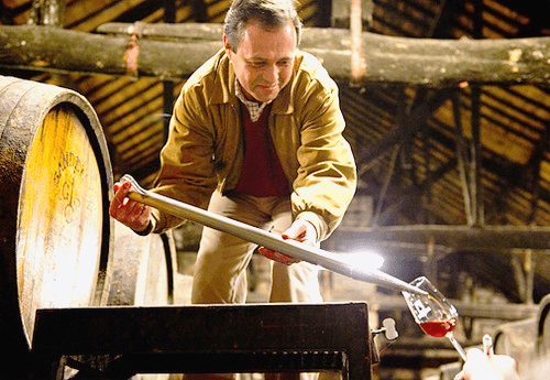 Making Fortified Wine