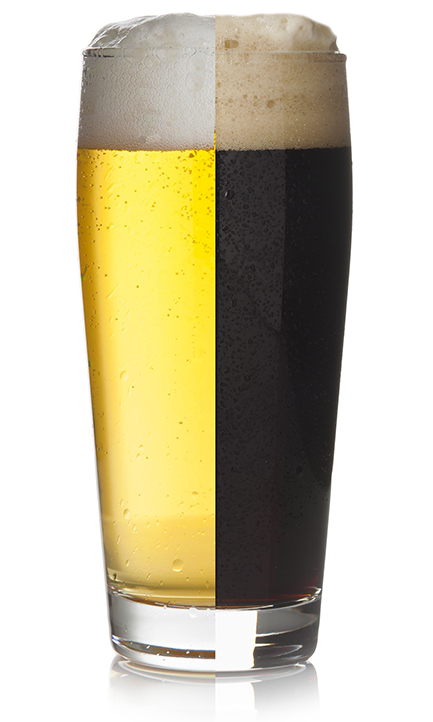 MashUp Beer