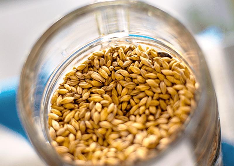 Specialty Malt For All Grain Brewing
